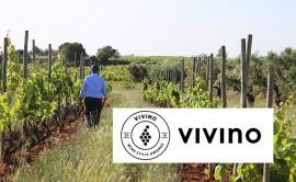 Recaredo, Top Wine in the Category 'Spanish Cava'