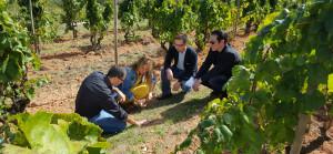 TV3 s'endinsa a les caves Recaredo