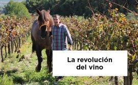 Ton Mata en La Revolución del Vino, de Jane Anson